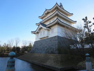 のぼうの城