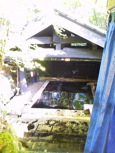 や、やっとのことで新緑眩しい黒川温泉