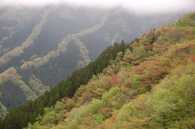 大峰山(弥山・八経ヶ岳)行者還トンネルより 【南紀遠征2日目】
