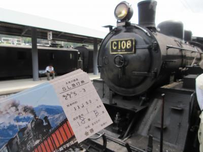 2015GW 掛川で城、大井川でSL・アプト式列車 三世代旅 【2】大井川鐵道
