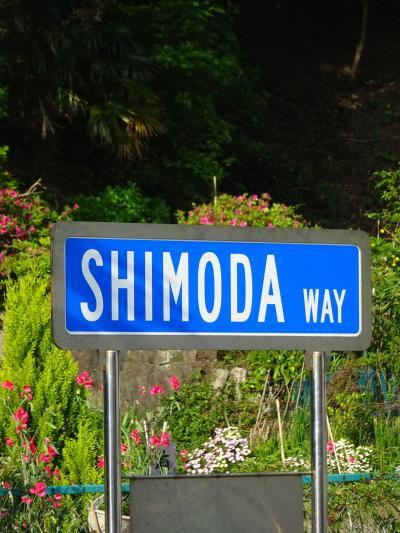 2015年5月・今年の夏は南伊豆下田・SHIMODAよりスタート!!