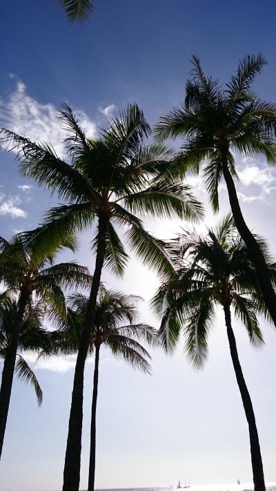 2014~2015年 年末年始ハワイの旅♪