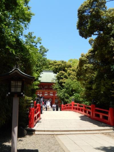 緑眩しい季節に誘われて武蔵一宮へ。