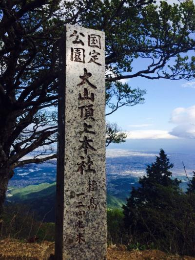 新緑がまぶい大山登山
