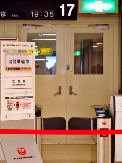伊丹空港19:35発 JAL134便⇒羽田空港へ ☆屋上展望デッキから見学