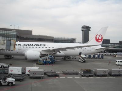 JAL ビジネスクラス [シカゴ→成田]  セントマーチン&アンギラ&プエルトリコ⑪