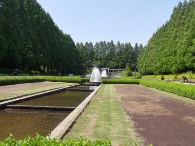 緑多く、起伏あり、噴水、熱帯温室がある、広大な公園