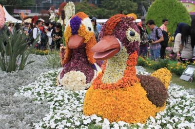 香港花卉展覧に行ってみた