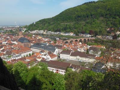 新緑のドイツ旅行<3> 古城とドイツ最古の大学 風情あふれる古都ハイデルベルク