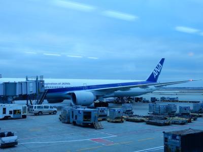 NH シカゴ→成田 B777-300ER ビジネスクラス