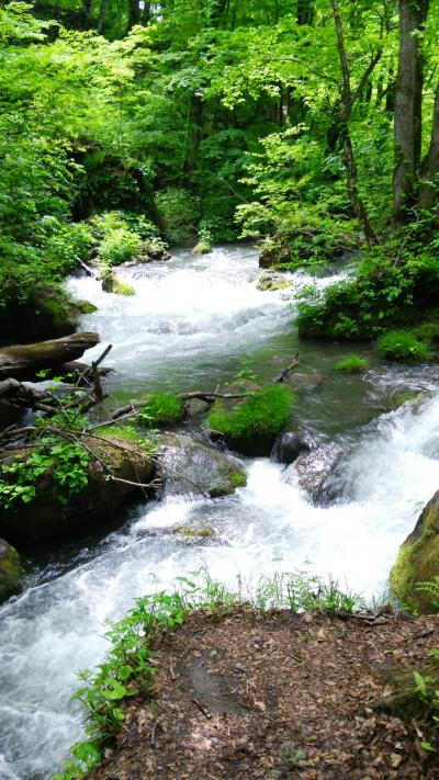 新緑の奥入瀬渓流ホテル&トレッキング