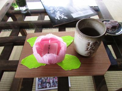 新緑の奈良 (2)  れんじょう寺から黄昏の奈良町で濃密な散歩をしたかったのだけど?