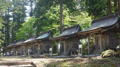 山形・新潟(庄内・佐渡)~クラゲとトキの旅~ 1日目(1)