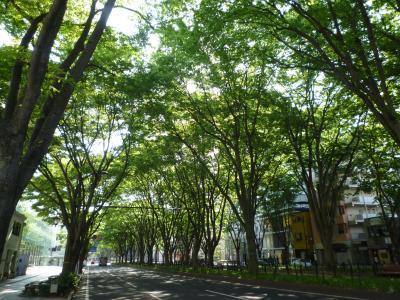 美しすぎる!新緑の仙台街歩き&憧れの「半田屋で朝食を」