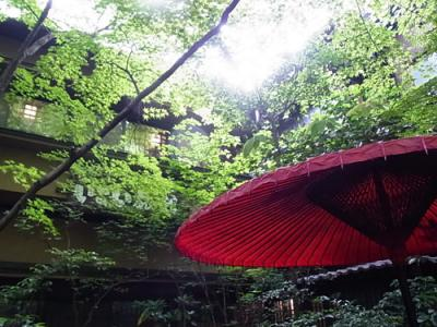 九州の秘湯に浸かりたい~新緑の壁湯・黒川温泉へ~