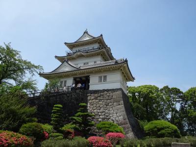 休館前の小田原城へ