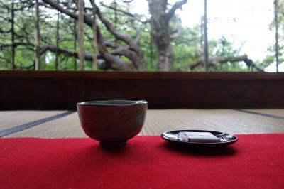 風情ある小雨の京都<花と苔を愛でる>