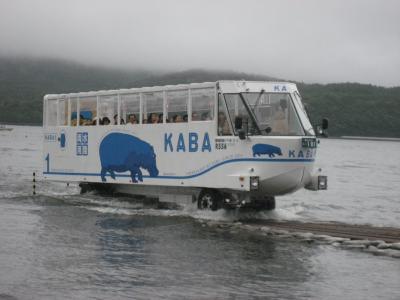 2011年8月21日:山中湖 にて「YAMANAKAKO NO KABA」に遭遇