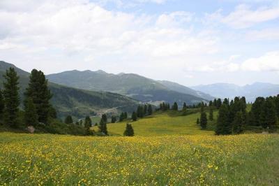 チロルでの山歩き(その3・ヒンターツックスとペンケン)