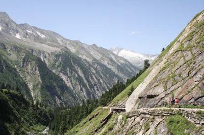 チロルでの山歩き(その4・ブライトラーナーからアルペンローゼヒュッテへ)