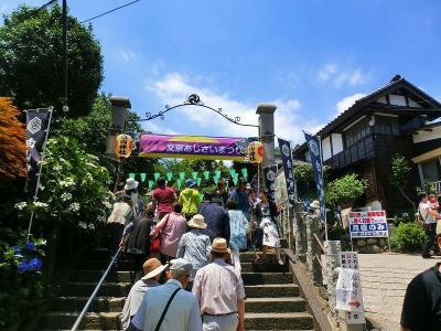 白山神社の文京紫陽花祭