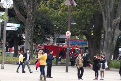 上野公園に消防車