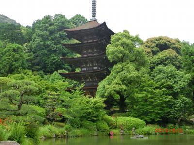 (8)日本3名塔・国宝瑠璃光寺五重塔の優雅な姿