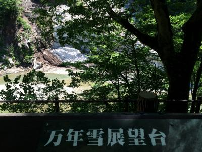 LOVE富山!宇奈月・トロッコ・回転寿司