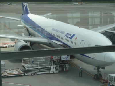 hamaは、羽田国際空港から常夏の比国へ、家内は国内線で涼しい札幌へ。 − 6月 2015年