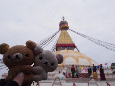 ネパール二大遊覧飛行とヒマラヤ眺望ホテル 10