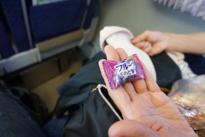 あめちゃん家族の旅物語 2015年初夏 北海道登別編(2日目)  おいしい葡萄の旅