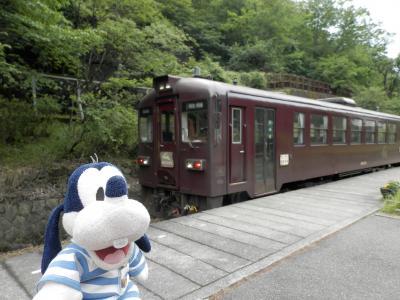 グーちゃん、足尾銅山跡を視察する!(えっ!渡辺篤史の「建もの探訪」?編)