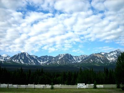 地球一周の船旅 vol.31 バンクーバー~カナディアンロッキー~ホワイトホース~アラスカハイウェイ~アンカレッジ~アラスカ鉄道~スワード 4,500キロの旅 5日目 ホワイトホース~アンカレッジ
