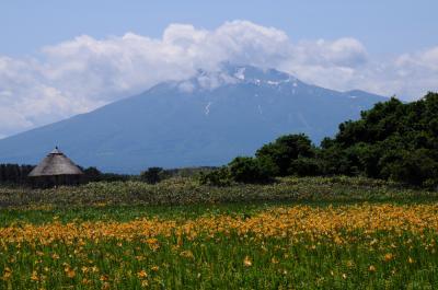 初夏の津軽へ【2】~ベンセ湿原のゼンテイカ~