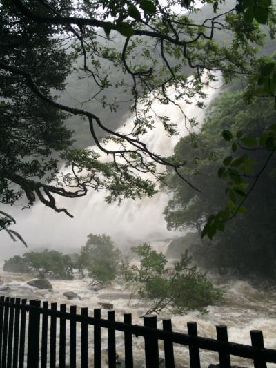 美しき水と緑の島 3日間 【2日目】 …つめこみ観光 AM