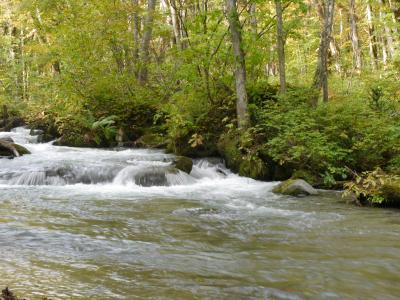 青森旅行のメインイベント八甲田山と奥入瀬渓流