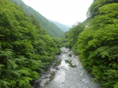 山梨 (さくらんぼ狩り&山間大自然の宿)旅