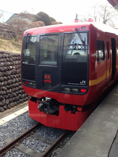 【日帰り】 大宮から電車一本で行く日光観光+宇都宮餃子