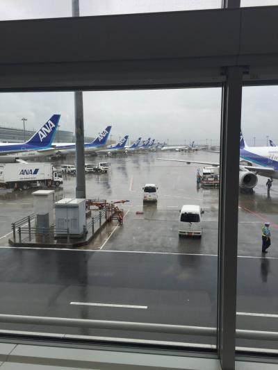 気乗りしない社員旅行 東京 ~1日目~