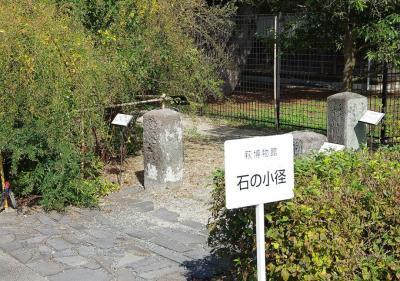萩博物館横にある静な歴史の証人達はそこで私を待っていました