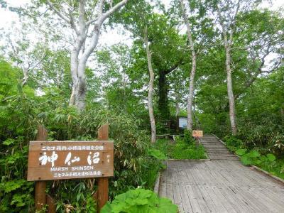 ニセコ:神仙沼1