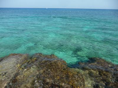 2年ぶりのコスメル島ダイビング。天気はイマイチでもカリビアン・ブルーは健在!
