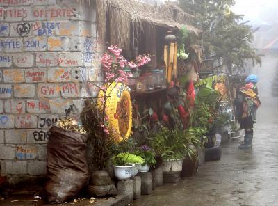 ベトナム・ラオスの旅 (3) サパからディエンビエンフーまで