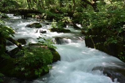 青森の旅1:奥入瀬渓流を散策