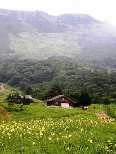 花の伊吹山登山と琵琶湖周辺の旅・・・一日目伊吹山の懐へ