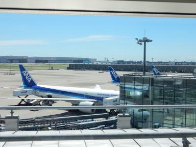 NH 羽田→フランクフルト B777-300ER ビジネスクラス 久々昼間便