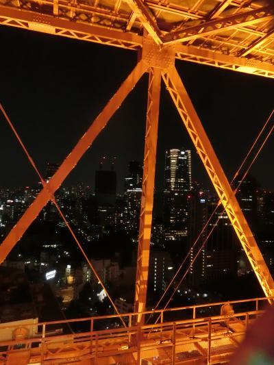 東京タワー 天の川イルミネーション 外階段上ったよ