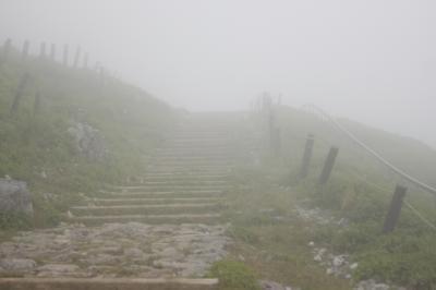 霧のヴェールに包まれた花の名山伊吹山の散策