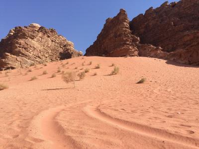 砂漠+岩山=Wadi Rum