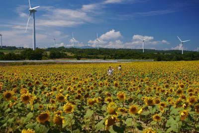 福島『布引山の風車』